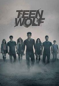 смотреть Волчонок 5 сезон 20 серия онлайн